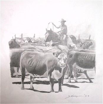 Bush Drawings Cattle Mustering Katherine Region Northern Territory